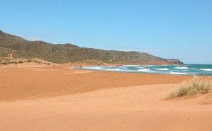 link actividades playas